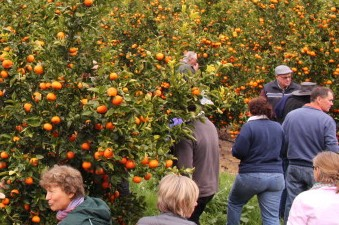 Horticulture bus tour, a first in the area