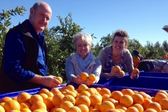 Moora Citrus tests export market