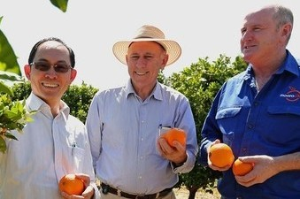 Agriculture Minister Ken Baston visits AGRIFresh's Orchard in Badgingarra to announce that WA growers are exporting citrus to China for the first time. Pictured is AGRIFresh Managing Director Joseph Ling as well as Moora Citrus Manager Shane Kay who is also exporting. Picture Michael Wilson The West Australian